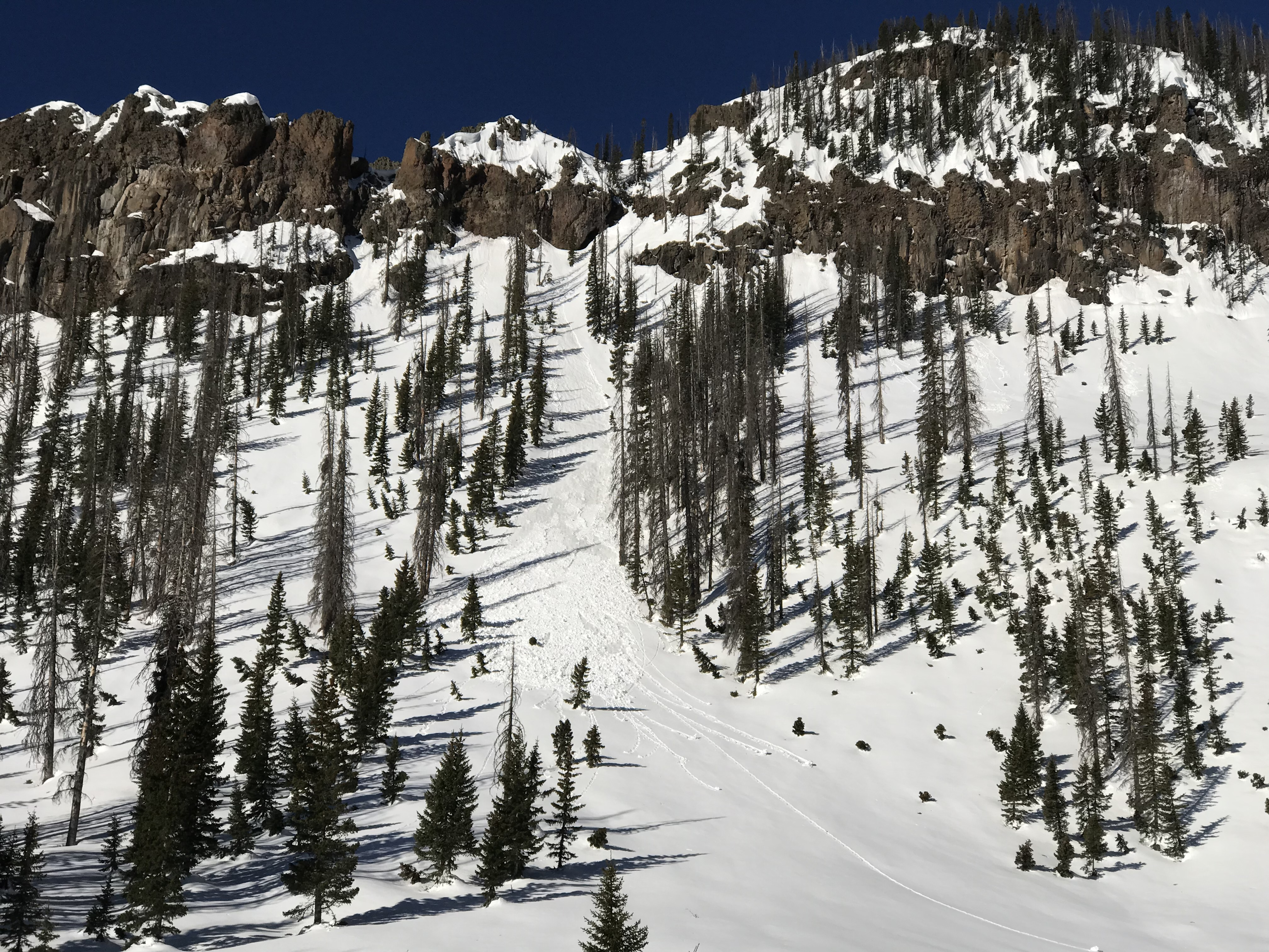 Recent wet loose avalanche triggered by a cornice fall from