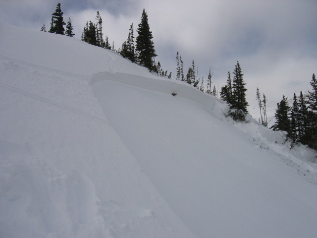 <b>Figure 1:</b> Photo taken from eastern end of the crown looking towards the deepest section...125 cm deep. Note ski tracks entering and exiting crown (<a href=javascript:void(0); onClick=win=window.open('http://avalanche.state.co.us/caic/media/full/acc_225_305.jpg','caic_media','resizable=1,height=820,width=840,scrollbars=yes');win.focus();return false;>see full sized image</a>)