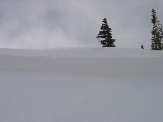 <b>Figure 2:</b> The crown viewed from the eastern flank. Note the ski track coming from the crown and back onto the eastern flank from Subject 1's ski cut. (<a href=javascript:void(0); onClick=win=window.open('https://avalanche.state.co.us/caic/media/full/acc_225_306.jpg','caic_media','resizable=1,height=820,width=840,scrollbars=yes');win.focus();return false;>see full sized image</a>)