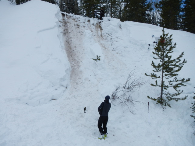 <b>Figure 2:</b> Looking up the avalanche path. CAIC forecaster is standing to the left of the burial site. (<a href=javascript:void(0); onClick=win=window.open('https://avalanche.state.co.us/caic/media/full/acc_431_1805.jpg','caic_media','resizable=1,height=820,width=840,scrollbars=yes');win.focus();return false;>see full sized image</a>)