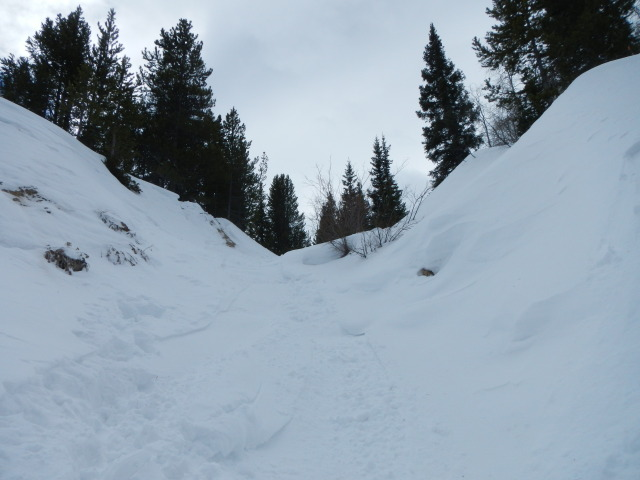 <b>Figure 6:</b> Looking up the gully at the route taken by Skier 1 and Skier 2. (<a href=javascript:void(0); onClick=win=window.open('https://avalanche.state.co.us/caic/media/full/acc_431_1810.jpg','caic_media','resizable=1,height=820,width=840,scrollbars=yes');win.focus();return false;>see full sized image</a>)