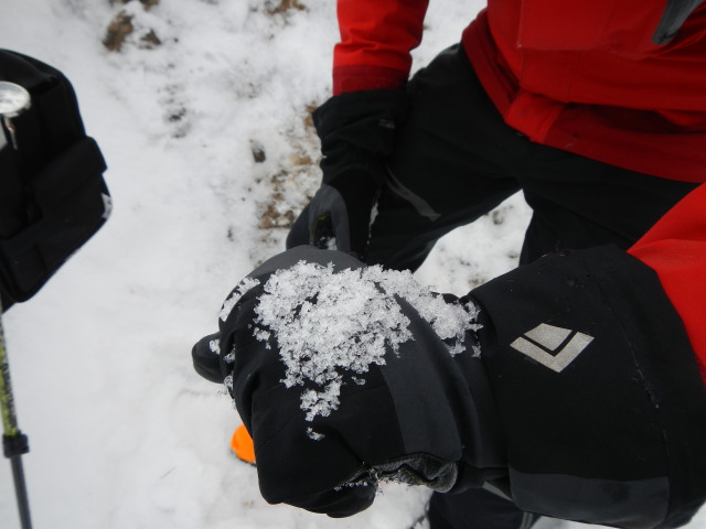 <b>Figure 7:</b> Depth hoar snow grains at the crown face of the avalanche. These grains were about 6 mm in size. (<a href=javascript:void(0); onClick=win=window.open('https://avalanche.state.co.us/caic/media/full/acc_431_1811.jpg','caic_media','resizable=1,height=820,width=840,scrollbars=yes');win.focus();return false;>see full sized image</a>)