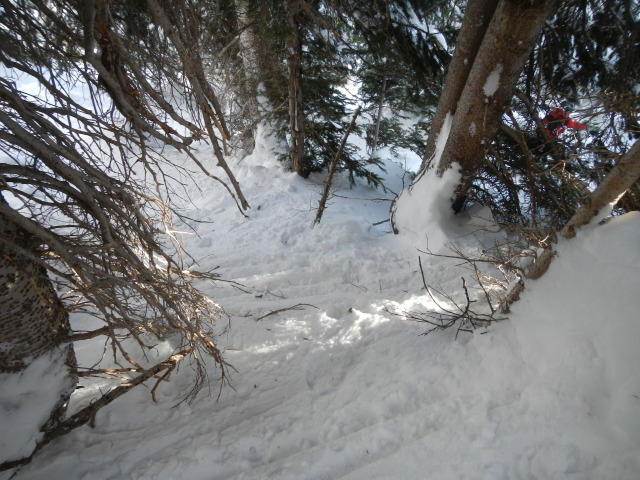 <b>Figure 1:</b> The view, down slope, in the area where Skier 1 was caught in the avalanche. (<a href=javascript:void(0); onClick=win=window.open('https://avalanche.state.co.us/caic/media/full/acc_432_1942.jpg','caic_media','resizable=1,height=820,width=840,scrollbars=yes');win.focus();return false;>see full sized image</a>)