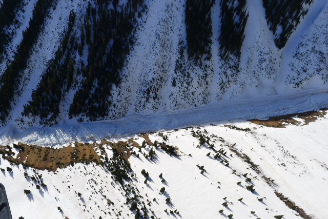 <b>Figure 17:</b> Debris from the avalanche in a lower portion of the gully. (<a href=javascript:void(0); onClick=win=window.open('https://avalanche.state.co.us/caic/media/full/acc_463_2875.jpg','caic_media','resizable=1,height=820,width=840,scrollbars=yes');win.focus();return false;>see full sized image</a>)