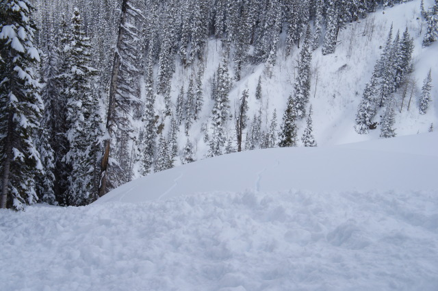 <b>Figure 4:</b> Toe of the debris at a bench in Swansea Gulch. Note cracking to the right of photo. If the avalanche had continued over the bench, results of this avalanche could have been worse. (<a href=javascript:void(0); onClick=win=window.open('https://avalanche.state.co.us/caic/media/full/acc_484_3964.jpg','caic_media','resizable=1,height=820,width=840,scrollbars=yes');win.focus();return false;>see full sized image</a>)
