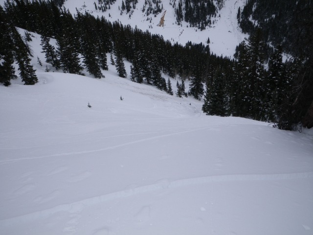 <b>Figure 2:</b> The three skier's tracks leading to the lower edge of the crown. (<a href=javascript:void(0); onClick=win=window.open('https://avalanche.state.co.us/caic/media/full/acc_485_4150.jpg','caic_media','resizable=1,height=820,width=840,scrollbars=yes');win.focus();return false;>see full sized image</a>)