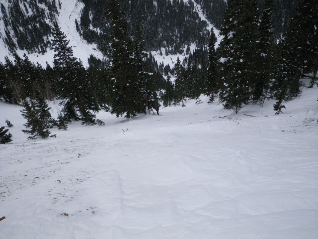 <b>Figure 8:</b> Looking down the bed surface into the track of the avalanche path. (<a href=javascript:void(0); onClick=win=window.open('https://avalanche.state.co.us/caic/media/full/acc_485_4156.jpg','caic_media','resizable=1,height=820,width=840,scrollbars=yes');win.focus();return false;>see full sized image</a>)