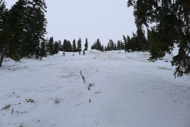 <b>Figure 11:</b> Looking up the track of the avalanche path towards crown. (<a href=javascript:void(0); onClick=win=window.open('https://avalanche.state.co.us/caic/media/full/acc_485_4159.jpg','caic_media','resizable=1,height=820,width=840,scrollbars=yes');win.focus();return false;>see full sized image</a>)