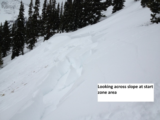 <b>Figure 7:</b> Looking across, toward the south at the crown. Note the ski tracks in the upper right corner of picture. (<a href=javascript:void(0); onClick=win=window.open('https://avalanche.state.co.us/caic/media/full/acc_486_4074.jpg','caic_media','resizable=1,height=820,width=840,scrollbars=yes');win.focus();return false;>see full sized image</a>)