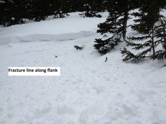 <b>Figure 9:</b> The fracture line along flank of the avalanche. (<a href=javascript:void(0); onClick=win=window.open('https://avalanche.state.co.us/caic/media/full/acc_486_4076.jpg','caic_media','resizable=1,height=820,width=840,scrollbars=yes');win.focus();return false;>see full sized image</a>)
