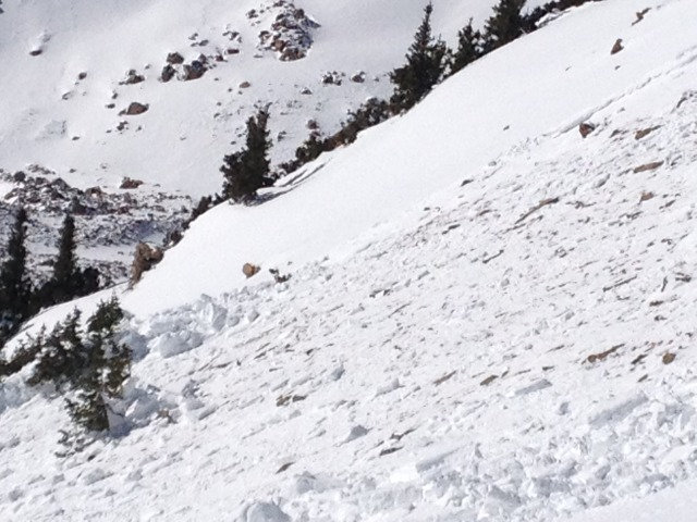 <b>Figure 5:</b> South flank of the slab. Skier 2 was pushed into the island of small trees, or 'Krumholtz', on the far left center of the photograph. (<a href=javascript:void(0); onClick=win=window.open('https://avalanche.state.co.us/caic/media/full/acc_489_4253.jpg','caic_media','resizable=1,height=820,width=840,scrollbars=yes');win.focus();return false;>see full sized image</a>)