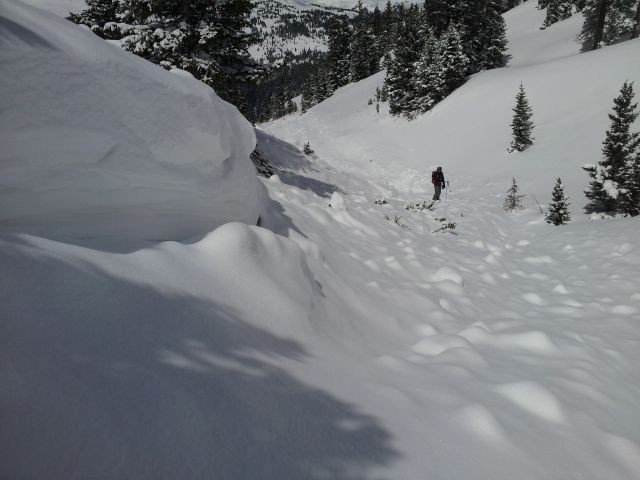 <b>Figure 14:</b> Looking down the gully features where the victims came to rest. The uppermost victims were found near where the CAIC forecaster is standing (<a href=javascript:void(0); onClick=win=window.open('http://avalanche.state.co.us/caic/media/full/acc_505_5136.jpg','caic_media','resizable=1,height=820,width=840,scrollbars=yes');win.focus();return false;>see full sized image</a>)
