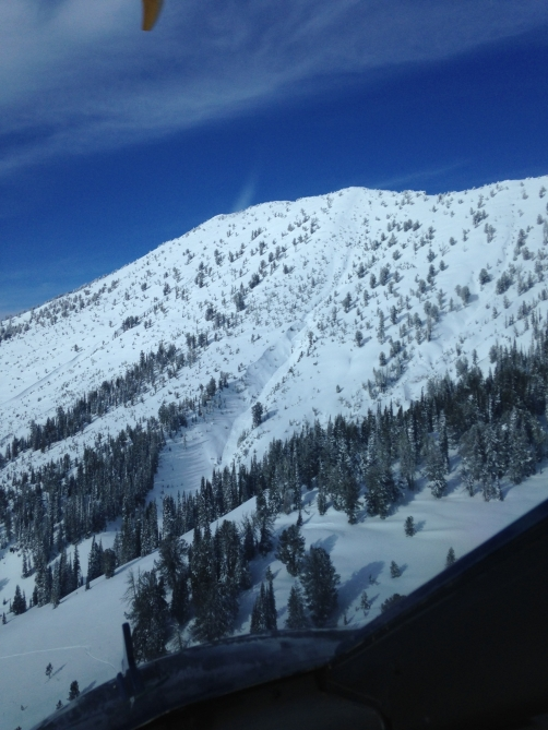 <b>Figure 1:</b> The avalanche ran on the sparsely treed slope and into the gully in the middle of the photograph. (<a href=javascript:void(0); onClick=win=window.open('http://avalanche.state.co.us/caic/media/full/acc_525_7358.jpg','caic_media','resizable=1,height=820,width=840,scrollbars=yes');win.focus();return false;>see full sized image</a>)