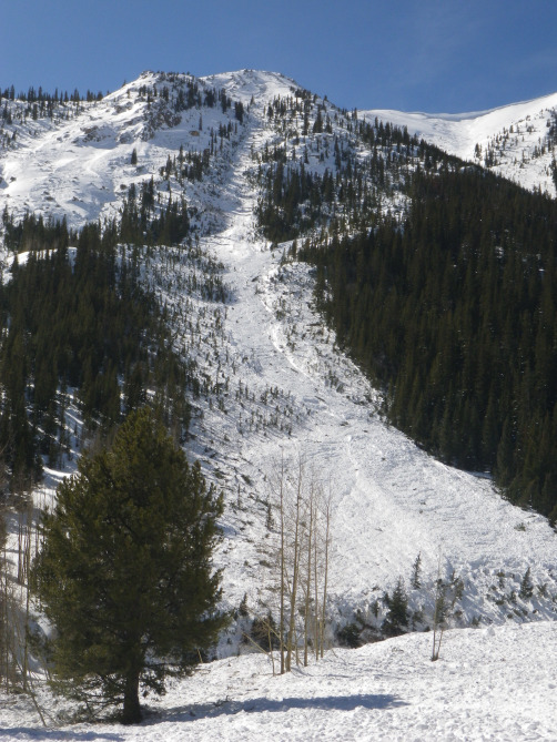 <b>Figure 2:</b> Looking up hill at the west side of the Star Mountain A avalanche path on February 17, 2014. (<a href=javascript:void(0); onClick=win=window.open('http://avalanche.state.co.us/caic/media/full/acc_526_7246.jpg','caic_media','resizable=1,height=820,width=840,scrollbars=yes');win.focus();return false;>see full sized image</a>)
