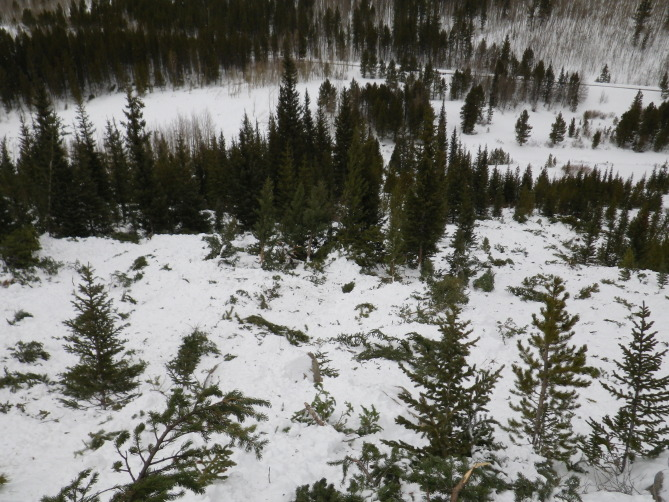 <b>Figure 18:</b> Trees damaged in the avalanche. (<a href=javascript:void(0); onClick=win=window.open('http://avalanche.state.co.us/caic/media/full/acc_526_7266.jpg','caic_media','resizable=1,height=820,width=840,scrollbars=yes');win.focus();return false;>see full sized image</a>)