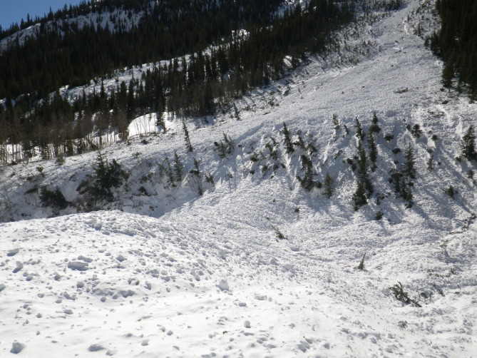 <b>Figure 20:</b> Avalanche debris in Lake Creek below the western portion of the Star Mountain A avalanche path. (<a href=javascript:void(0); onClick=win=window.open('http://avalanche.state.co.us/caic/media/full/acc_526_7268.jpg','caic_media','resizable=1,height=820,width=840,scrollbars=yes');win.focus();return false;>see full sized image</a>)