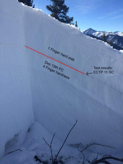 <b>Figure 5:</b> A snow profile at the fracture line with notes added. (<a href=javascript:void(0); onClick=win=window.open('https://avalanche.state.co.us/caic/media/full/acc_556_8772.jpg','caic_media','resizable=1,height=820,width=840,scrollbars=yes');win.focus();return false;>see full sized image</a>)