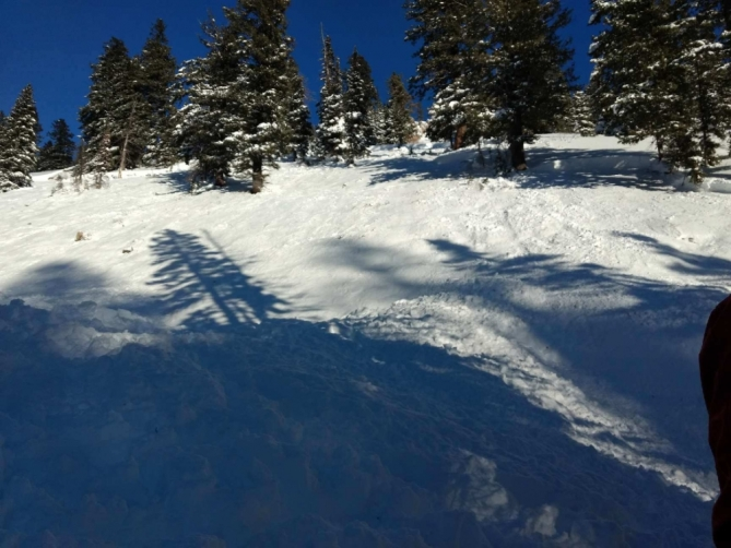 <b>Figure 4:</b> The avalanche was estimated to be up to 2.5 feet deep, 600' wide and 2-300' slope distance. Photo: GNFAC (<a href=javascript:void(0); onClick=win=window.open('http://avalanche.state.co.us/caic/media/full/acc_648_18612.jpeg','caic_media','resizable=1,height=820,width=840,scrollbars=yes');win.focus();return false;>see full sized image</a>)