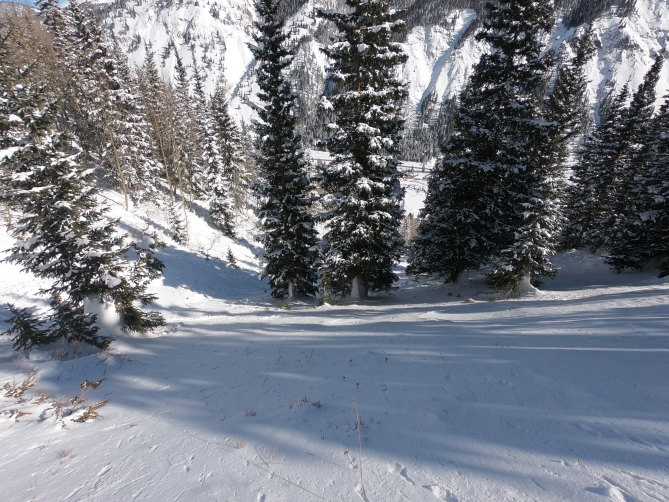 <b>Figure 7:</b> Looking down from the top of the avalanche into gully. (<a href=javascript:void(0); onClick=win=window.open('http://avalanche.state.co.us/caic/media/full/acc_649_18679.jpg','caic_media','resizable=1,height=820,width=840,scrollbars=yes');win.focus();return false;>see full sized image</a>)