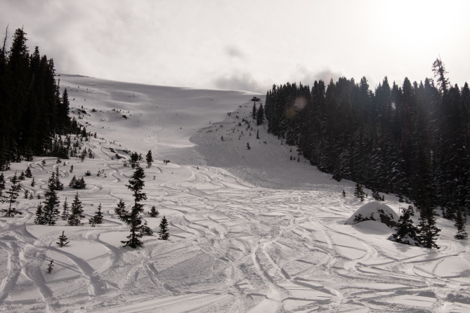 <b>Figure 4:</b> Looking uphill at the avalanche debris from the bottom of the Avalanche Bowl path. (<a href=javascript:void(0); onClick=win=window.open('http://avalanche.state.co.us/caic/media/full/acc_650_19049.jpg','caic_media','resizable=1,height=820,width=840,scrollbars=yes');win.focus();return false;>see full sized image</a>)