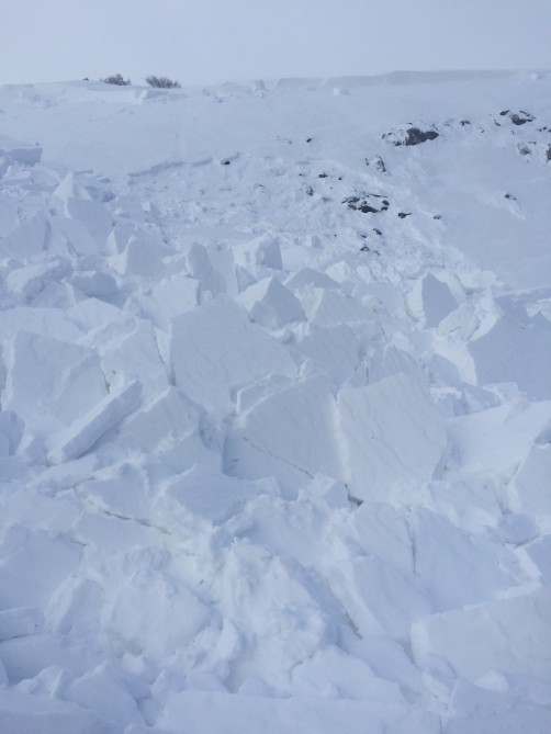 <b>Figure 2:</b> This avalanche broke on old, faceted snow layers and stepped down to the ground in places. (<a href=javascript:void(0); onClick=win=window.open('https://avalanche.state.co.us/caic/media/full/acc_675_20912.jpeg','caic_media','resizable=1,height=820,width=840,scrollbars=yes');win.focus();return false;>see full sized image</a>)