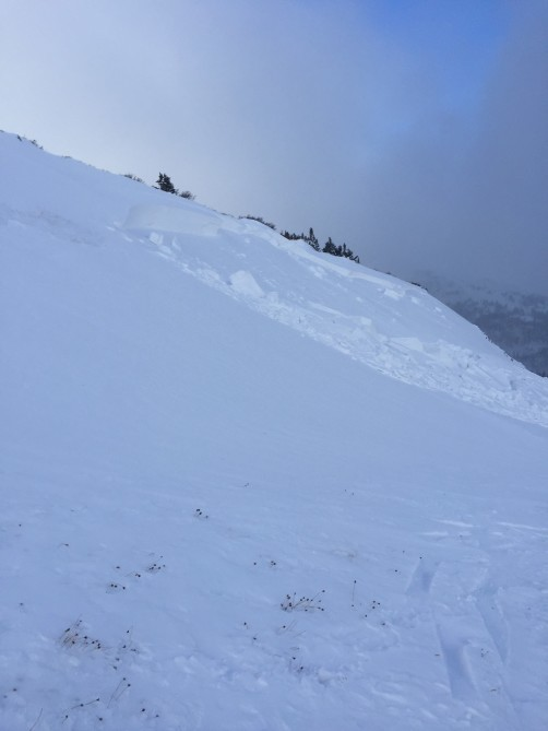<b>Figure 3:</b> The deepest part of the crown of the avalanche was measured by another party in the area at 120 cm. (<a href=javascript:void(0); onClick=win=window.open('https://avalanche.state.co.us/caic/media/full/acc_675_20913.jpeg','caic_media','resizable=1,height=820,width=840,scrollbars=yes');win.focus();return false;>see full sized image</a>)