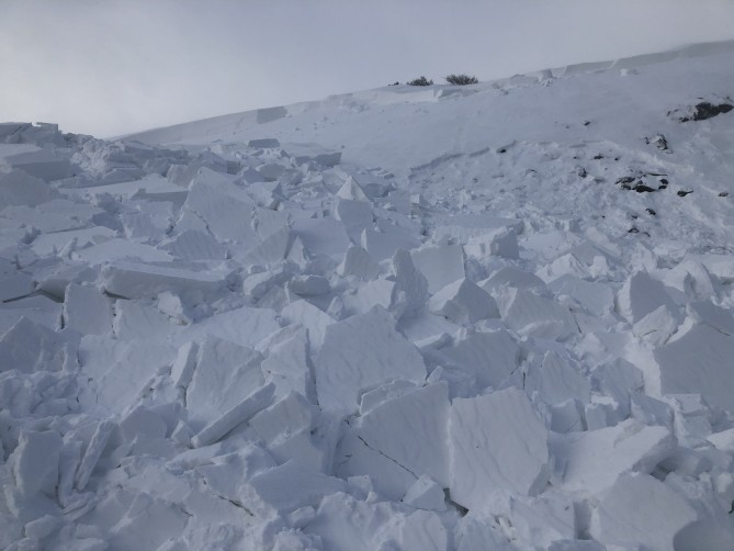 <b>Figure 5:</b> Debris from this avalanche piled up on a flat bench in the terrain. The debris was 3 feet at the deepest point. (<a href=javascript:void(0); onClick=win=window.open('https://avalanche.state.co.us/caic/media/full/acc_675_20915.jpeg','caic_media','resizable=1,height=820,width=840,scrollbars=yes');win.focus();return false;>see full sized image</a>)