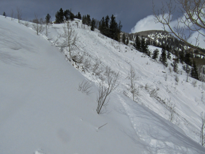 <b>Figure 1:</b> The start zone and fracture line of an avalanche that caught and killed two backcountry skiers on February 16th, 2019. (<a href=javascript:void(0); onClick=win=window.open('https://avalanche.state.co.us/caic/media/full/acc_704_24671.jpg','caic_media','resizable=1,height=820,width=840,scrollbars=yes');win.focus();return false;>see full sized image</a>)