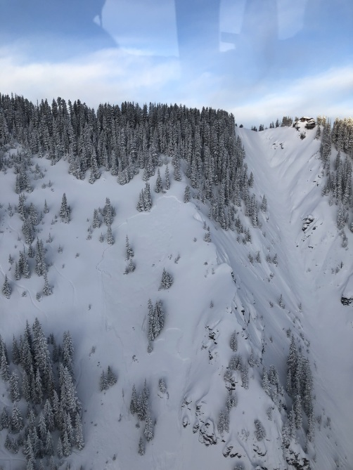 <b>Figure 1:</b> This image shows the avalanche that ran February 19, 2019 in the Temptation area above Bear Creek. (<a href=javascript:void(0); onClick=win=window.open('https://avalanche.state.co.us/caic/media/full/acc_705_24714.jpg','caic_media','resizable=1,height=820,width=840,scrollbars=yes');win.focus();return false;>see full sized image</a>)