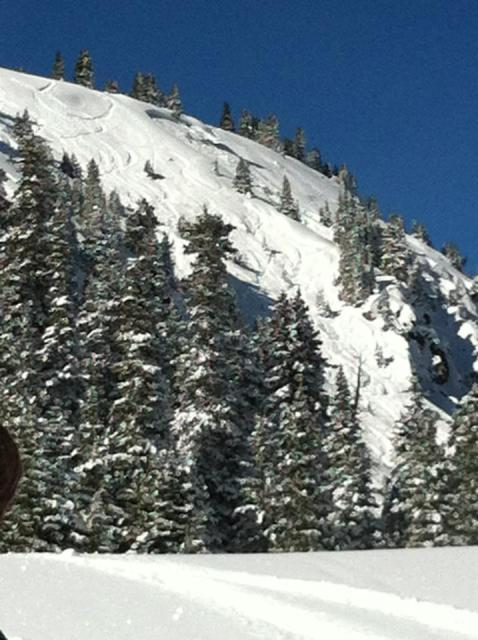<b>Figure 1:</b> View from the road at Berthoud Pass. SS-AR-R2D2-G(dh) above cliffs. The snowboarder was lucky getting flushed against some trees instead of going over the cliff. (<a href=javascript:void(0); onClick=win=window.open('https://avalanche.state.co.us/caic/media/full/obs_17096_3994.jpg','caic_media','resizable=1,height=820,width=840,scrollbars=yes');win.focus();return false;>see full sized image</a>)