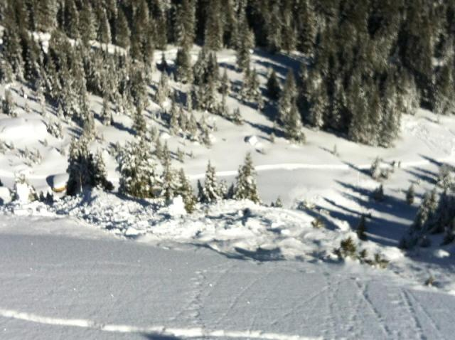 <b>Figure 2:</b> Looking down from just above the crown. Some debris piled up against the trees, while most of the avalanche spilled over the cliff. (<a href=javascript:void(0); onClick=win=window.open('https://avalanche.state.co.us/caic/media/full/obs_17096_3996.jpg','caic_media','resizable=1,height=820,width=840,scrollbars=yes');win.focus();return false;>see full sized image</a>)