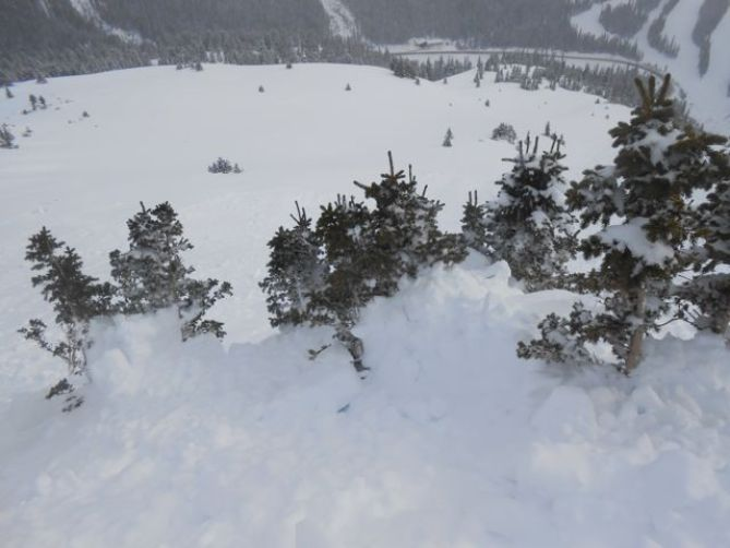 <b>Figure 3:</b> Even a very small clump of trees acted as a terrain trap. (<a href=javascript:void(0); onClick=win=window.open('https://avalanche.state.co.us/caic/media/full/obs_21767_6087.jpg','caic_media','resizable=1,height=820,width=840,scrollbars=yes');win.focus();return false;>see full sized image</a>)