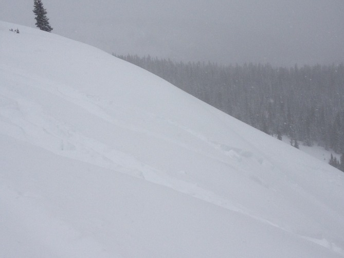 <b>Figure 1:</b> small skier trigger slide ion east slope at old Berthoud ski area (<a href=javascript:void(0); onClick=win=window.open('https://avalanche.state.co.us/caic/media/full/obs_22473_6549.jpg','caic_media','resizable=1,height=820,width=840,scrollbars=yes');win.focus();return false;>see full sized image</a>)