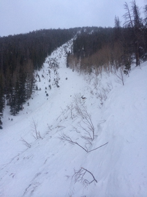 <b>Figure 1:</b> Looking up from the curve of the J at 9800' (<a href=javascript:void(0); onClick=win=window.open('https://avalanche.state.co.us/caic/media/full/obs_23092_6890.jpg','caic_media','resizable=1,height=820,width=840,scrollbars=yes');win.focus();return false;>see full sized image</a>)