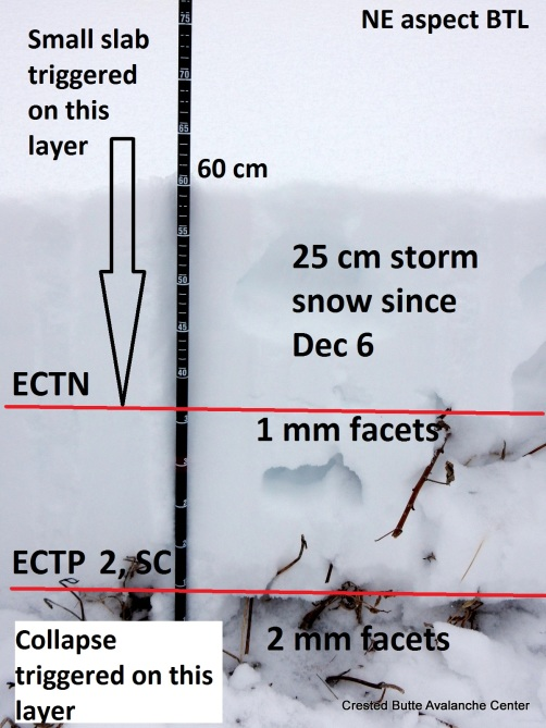 <b>Figure 1:</b> NE aspect BTL. Experienced one moderate collapse in this location. (<a href=javascript:void(0); onClick=win=window.open('https://avalanche.state.co.us/caic/media/full/obs_43030_13664.jpg','caic_media','resizable=1,height=820,width=840,scrollbars=yes');win.focus();return false;>see full sized image</a>)