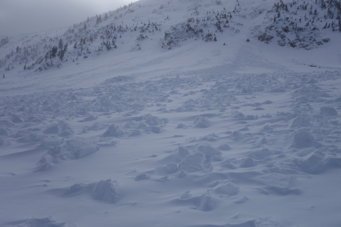 <b>Figure 3:</b> View of the South Diamond Peak avalanche which occurred on 12-24-2016. This is a view looking up from the toe of the debris. The avalanche ran on a well developed layer of depth hoar at the ground. (<a href=javascript:void(0); onClick=win=window.open('http://avalanche.state.co.us/caic/media/full/obs_43762_14203.jpg','caic_media','resizable=1,height=820,width=840,scrollbars=yes');win.focus();return false;>see full sized image</a>)