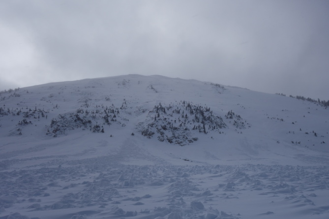 <b>Figure 4:</b> Looking up at the NE face of South Diamond peak from the run out zone. This avalanche ran on 12-24-2016. (<a href=javascript:void(0); onClick=win=window.open('http://avalanche.state.co.us/caic/media/full/obs_43762_14204.jpg','caic_media','resizable=1,height=820,width=840,scrollbars=yes');win.focus();return false;>see full sized image</a>)