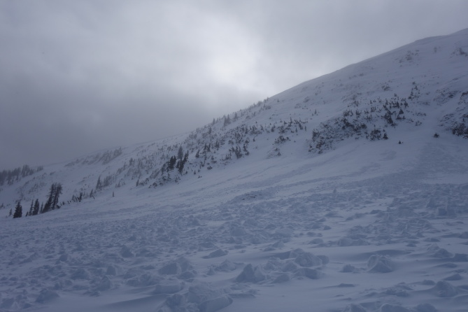 <b>Figure 5:</b> Looking across the debris pile to the south. The avalanche terminated at the cliff band on the left of the photograph. South Diamond Peak avalanche 12-24-2016 (<a href=javascript:void(0); onClick=win=window.open('http://avalanche.state.co.us/caic/media/full/obs_43762_14205.jpg','caic_media','resizable=1,height=820,width=840,scrollbars=yes');win.focus();return false;>see full sized image</a>)