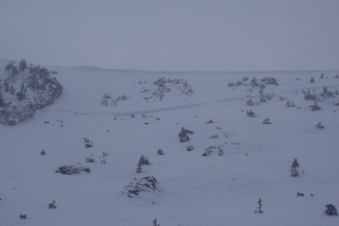 <b>Figure 6:</b> Photograph of the crown line. Approximate depth 5 feet. South Diamond peak 12-24-2016. (<a href=javascript:void(0); onClick=win=window.open('http://avalanche.state.co.us/caic/media/full/obs_43762_14206.jpg','caic_media','resizable=1,height=820,width=840,scrollbars=yes');win.focus();return false;>see full sized image</a>)