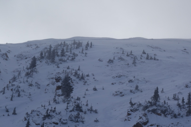 <b>Figure 8:</b> Photograph of the crown line. Average depth of the crown was 3 feet maximum depth about 5 feet. South Diamond peak 12-24-2016. (<a href=javascript:void(0); onClick=win=window.open('http://avalanche.state.co.us/caic/media/full/obs_43762_14208.jpg','caic_media','resizable=1,height=820,width=840,scrollbars=yes');win.focus();return false;>see full sized image</a>)