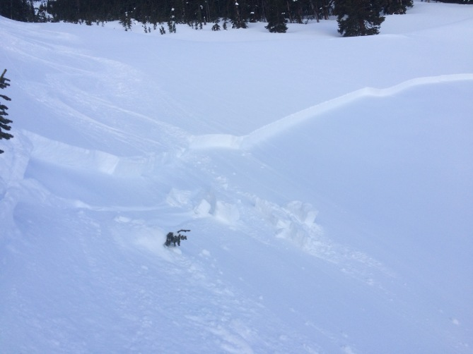 <b>Figure 2:</b> first skier skied through area with no incident. second skier was skiing down above the crown zone when slide started and skied off to right side just below the crown and behind the soft slab slide.2-4-17 (<a href=javascript:void(0); onClick=win=window.open('https://avalanche.state.co.us/caic/media/full/obs_45250_15323.jpg','caic_media','resizable=1,height=820,width=840,scrollbars=yes');win.focus();return false;>see full sized image</a>)