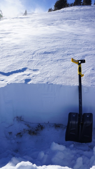 <b>Figure 5:</b> Shallow snowpack NTL on E-facing slope. New storm slab is evident, but not quite enough to burden basal weak layers in this area. (<a href=javascript:void(0); onClick=win=window.open('http://avalanche.state.co.us/caic/media/full/obs_48489_17855.jpg','caic_media','resizable=1,height=820,width=840,scrollbars=yes');win.focus();return false;>see full sized image</a>)