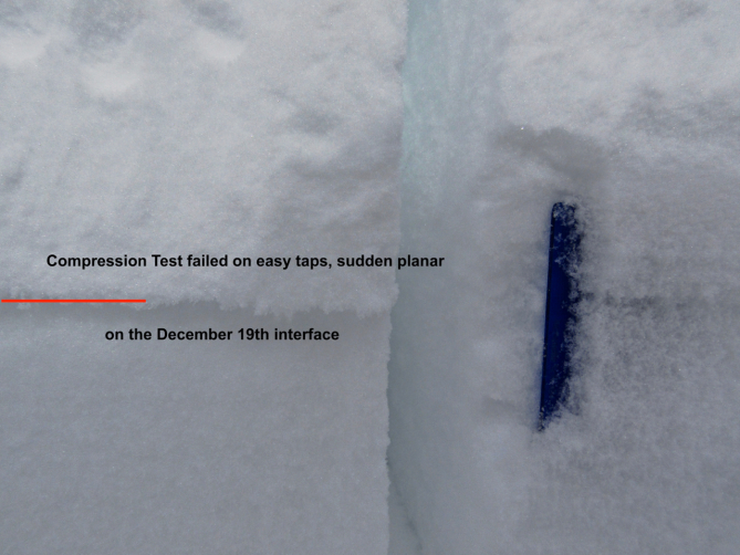 <b>Figure 5:</b> Compression test that broke on the December 19th interface on a south-facing slope.  The blue crystal card was inserted to make the weak layer more visible in snow next to the test. (<a href=javascript:void(0); onClick=win=window.open('https://avalanche.state.co.us/caic/media/full/obs_53161_22504.jpg','caic_media','resizable=1,height=820,width=840,scrollbars=yes');win.focus();return false;>see full sized image</a>)