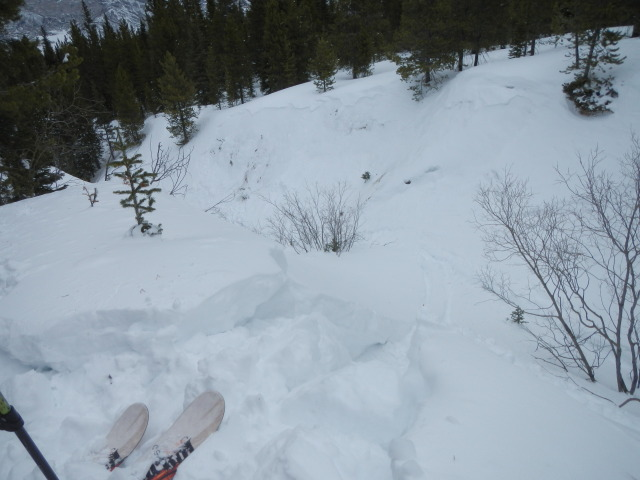 <b>Figure 10:</b> The view from where Skier 2 entered the gully. There is a shallow soft-slab avalanche on the opposite side of the gully. At the time of this report, we do not know if this avalanche released during the accident or rescue. (<a href=javascript:void(0); onClick=win=window.open('https://avalanche.state.co.us/media/full/acc_431_1818.jpg','caic_media','resizable=1,height=820,width=840,scrollbars=yes');win.focus();return false;>see full sized image</a>)