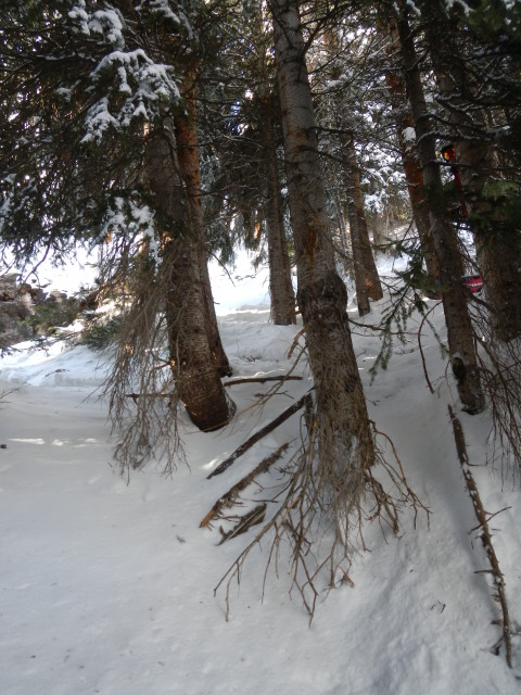 <b>Figure 3:</b> The view, up slope, above where Skier 1 came to rest. (<a href=javascript:void(0); onClick=win=window.open('https://avalanche.state.co.us/media/full/acc_432_1945.jpg','caic_media','resizable=1,height=820,width=840,scrollbars=yes');win.focus();return false;>see full sized image</a>)
