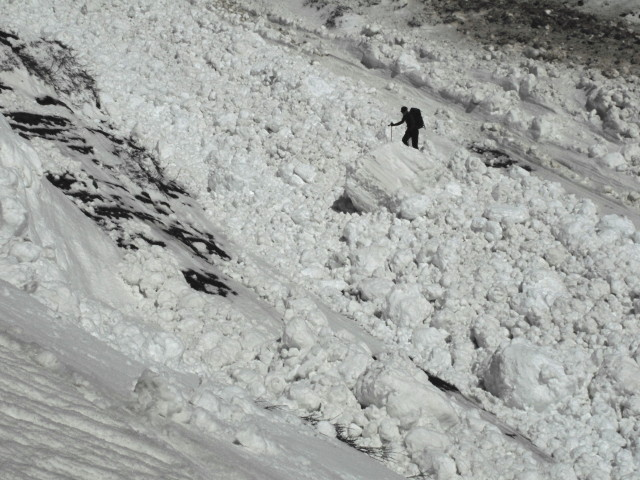 <b>Figure 10:</b> Looking across the debris mid-track. Traveling through this area was very difficult. (<a href=javascript:void(0); onClick=win=window.open('https://avalanche.state.co.us/media/full/acc_463_2812.jpg','caic_media','resizable=1,height=820,width=840,scrollbars=yes');win.focus();return false;>see full sized image</a>)