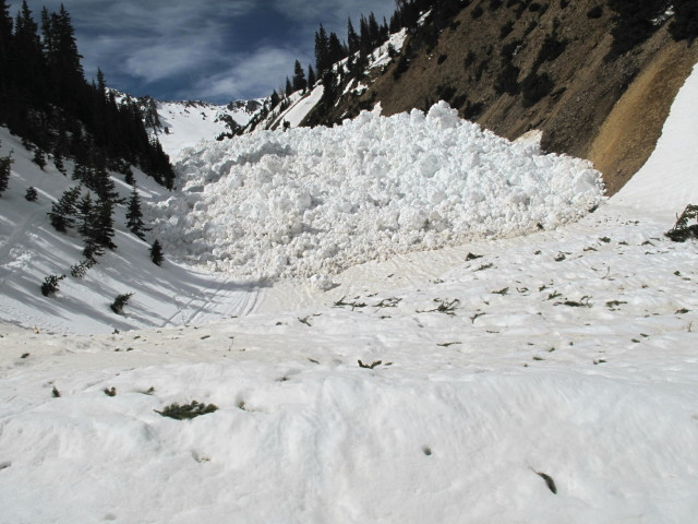 <b>Figure 12:</b> Looking up at toe of debris from lower in the drainage. (<a href=javascript:void(0); onClick=win=window.open('https://avalanche.state.co.us/media/full/acc_463_2814.jpg','caic_media','resizable=1,height=820,width=840,scrollbars=yes');win.focus();return false;>see full sized image</a>)